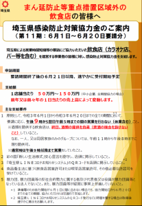 chirashi11_gai_omote[1]
