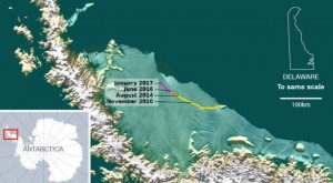 larsen-c-shelf-antarctica[1]